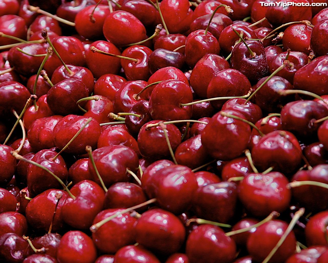 cherries wallpaper cherry cherries