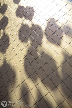 Lantern shadows (Malaysia)